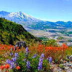 Adventure Log: Boundary West, Mt. St. Helens