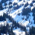 Adventure Log: Paradise in the Snow