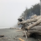 Adventure Log: Rialto Beach
