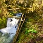 Adventure Log: Porter Falls & Lake Sylvia