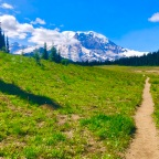 Adventure Log: Redwoods & Rainier